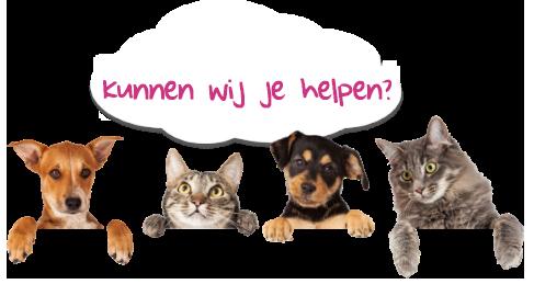 Kunnen wij je helpen?